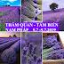 TOUR THĂM QUAN + TẮM BIỂN - NAM PHÁP- 5.7.-.9.7.2019 TOUR MÁY BAY