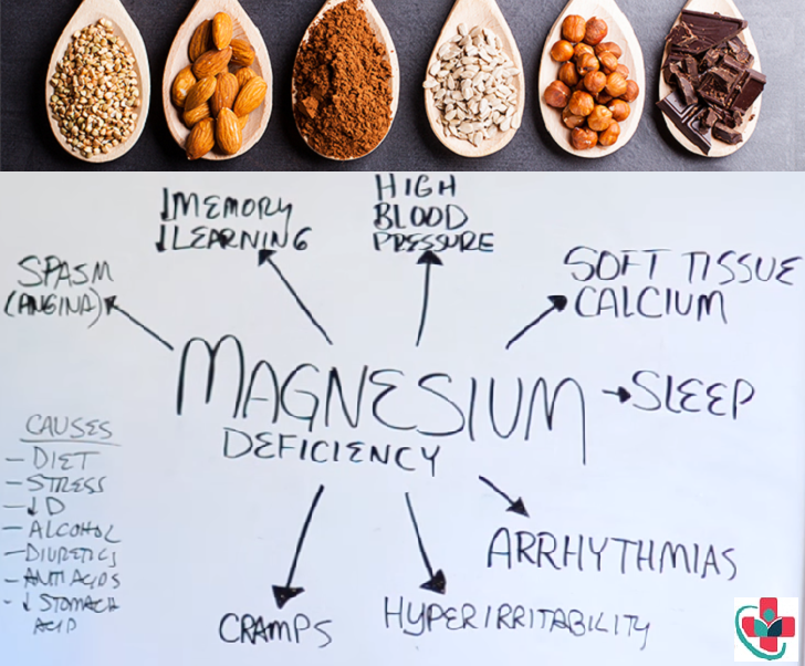 Importance of Magnesium in the Body