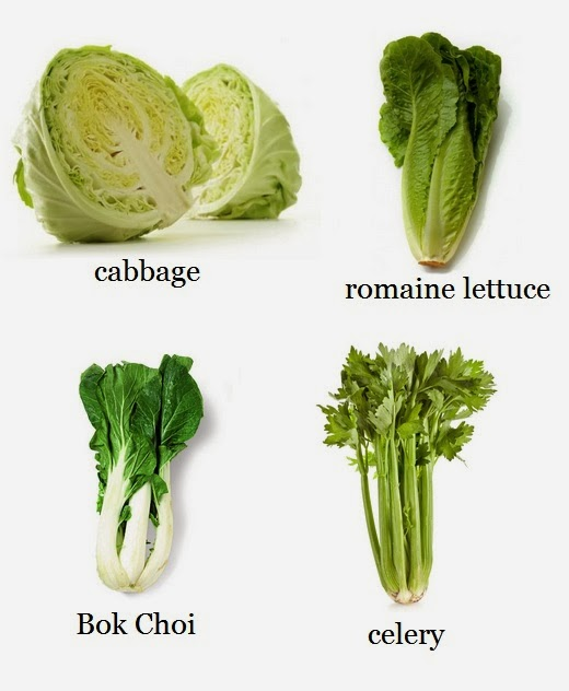 10 Vegetables You Re Grow From Kitchen Scraps: How To Re-Grow Celery, Bok Choi, Romaine Lettuce & Cabbage