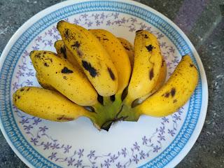 Sun cooked dinner - Banana