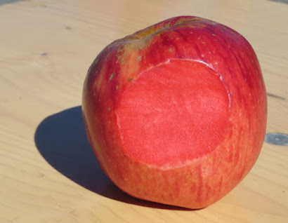 Apple sliced to reveal red flesh
