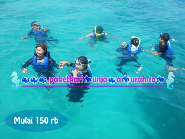 Brosur paket snorkeling karimunjawa