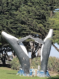Berwick Park in Pacific Grove California