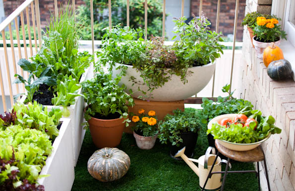 How To Create Spacious Green Living In Your Balcony Six