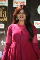 Monal Gajjar in Maroon Gown Stunning Cute Beauty at IIFA Utsavam Awards 2017 065.JPG