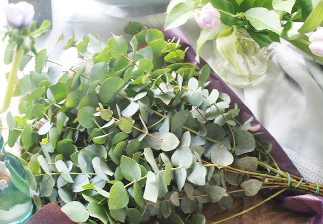 Bundt Eucalyptus