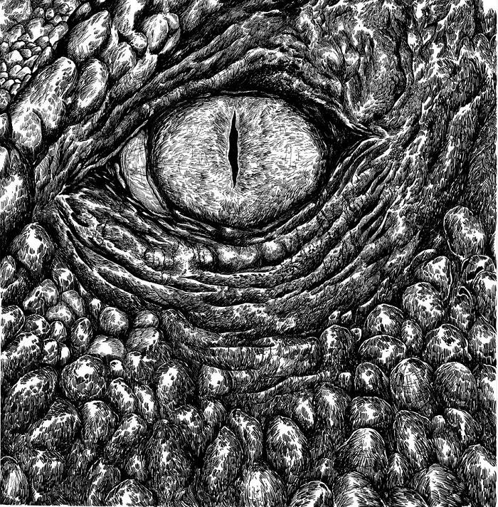 07-Reptile-Eye-Dušan-Krtolica-No-Reference-Drawings-come-from-Memory-www-designstack-co