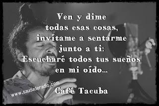 Frase de la cancion Las flores de Cafe Tacuba