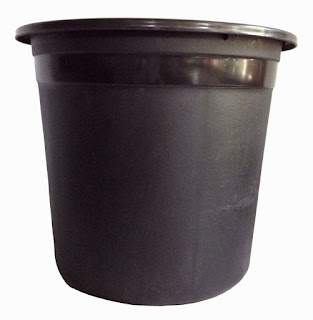 plastic pots for vegetable plants