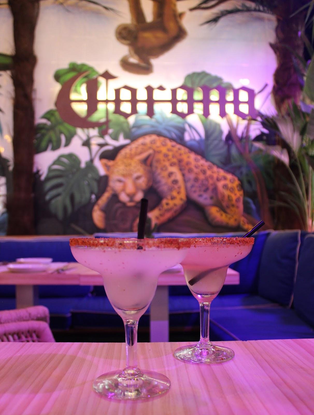 gracias padre jungle club restaurante mexicano madrid