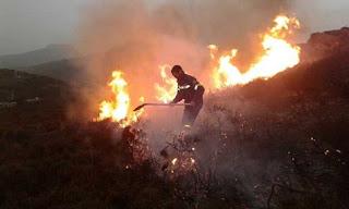 απαγόρευση της καύσης σε αγροτικές εκτάσεις