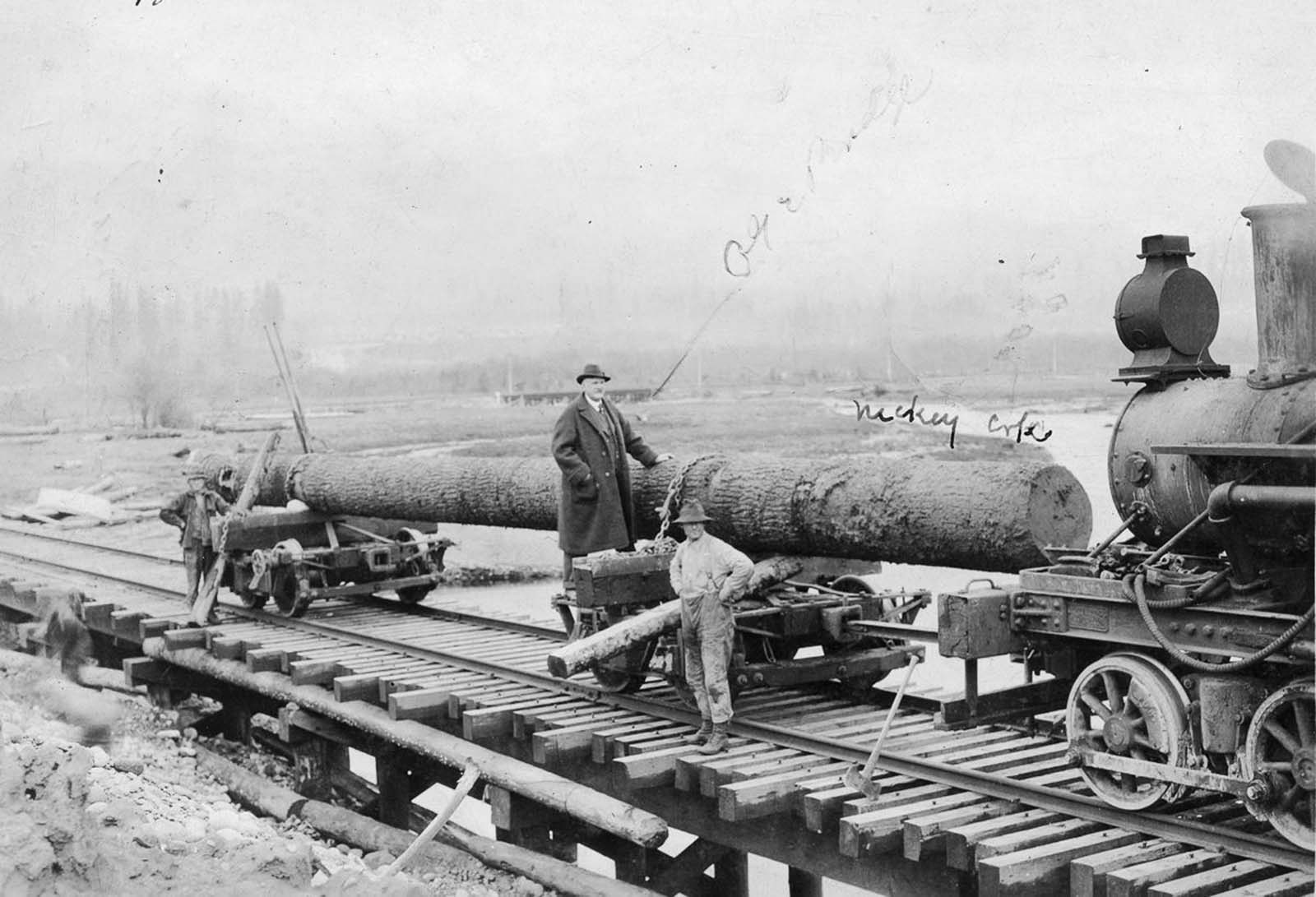 A log ready to be transported by rail. 1918.