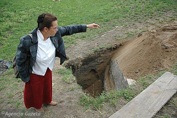 Profesor Hanna Kocka Krenz
