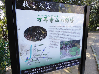 万年寺山の緑陰(まんねんじやまのりょくいん)