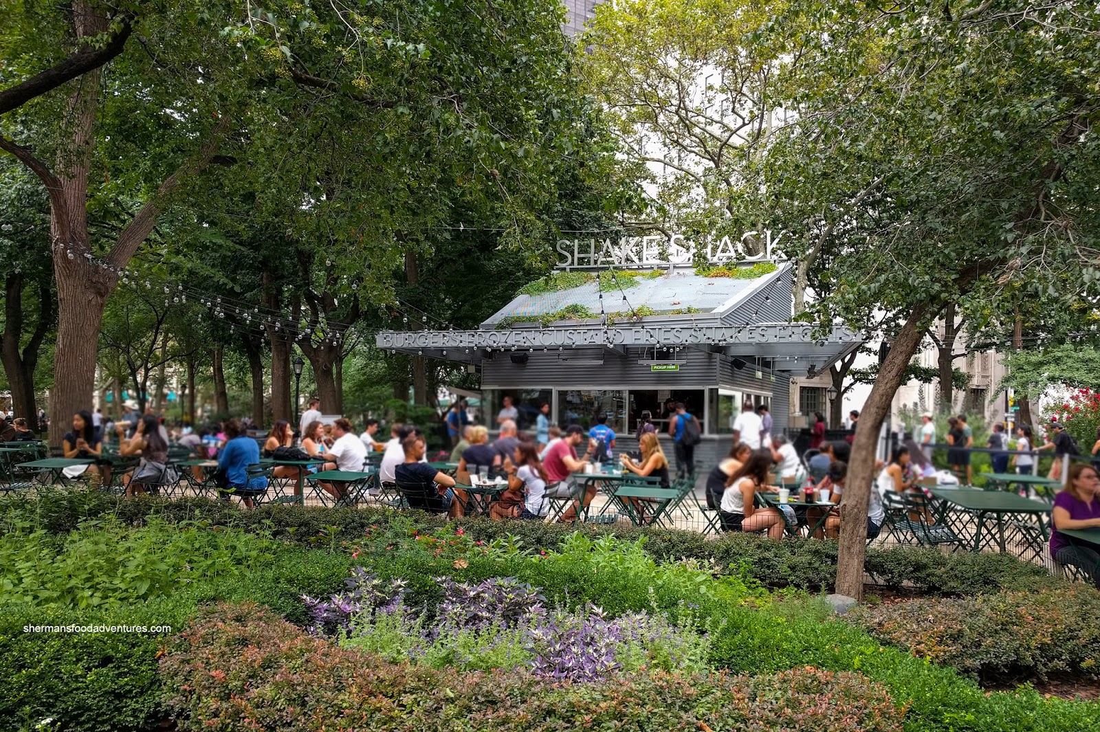 Sherman's Food Adventures: Shake Shack (Madison Park)