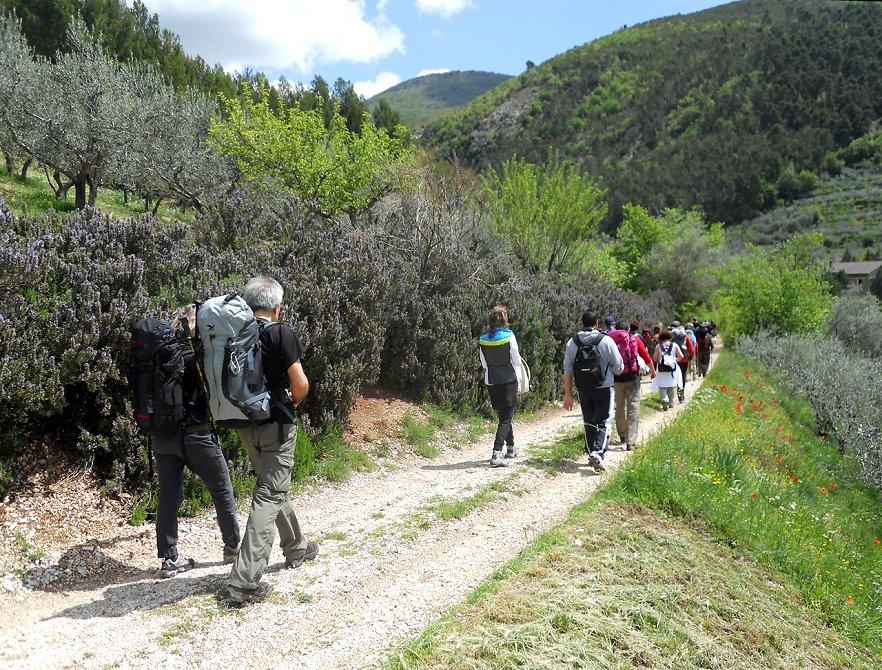 Turismo lento assisi ascoli piceno il cammino francescano della marca - Diversi tipi di turismo ...