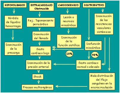 Shock septico fisiopatologia