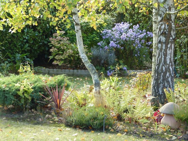 Le jardin de pacalou merveilles d 39 automne for Tous au jardin
