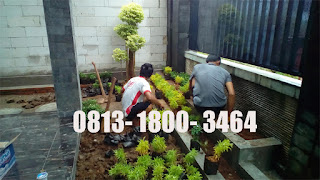 Tukang Taman Cimanggu,Jasa Tukang Taman di Cimanggu,Jasa Pembuatan Taman di Cimanggu