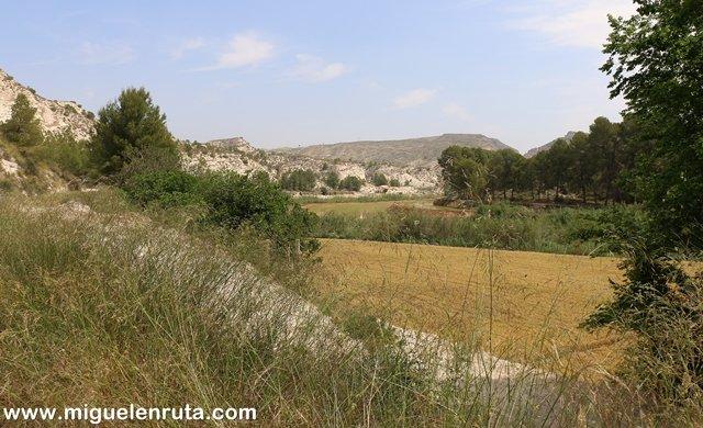Campos-cultivo-Almadenes