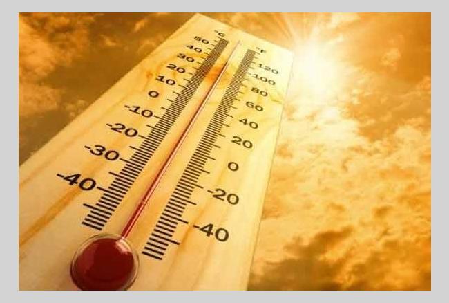 गर्मी से होने वाले रोग