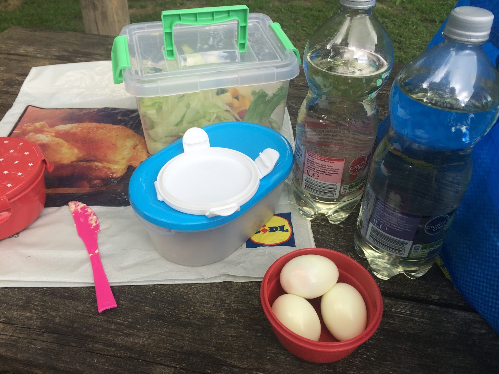 slimming-world-picnic