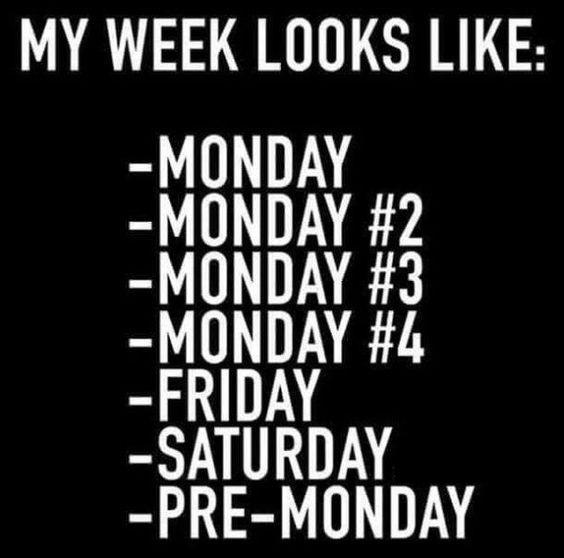 My Week Looks Like