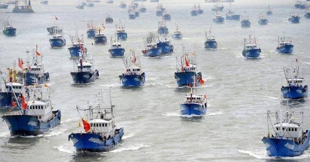 Các tàu đánh bắt hải sản Trung Quốc