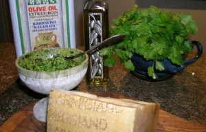 Ingredients for Cilantro Pesto. Pine nuts, cilantro, parmigiano cheese and olive oil