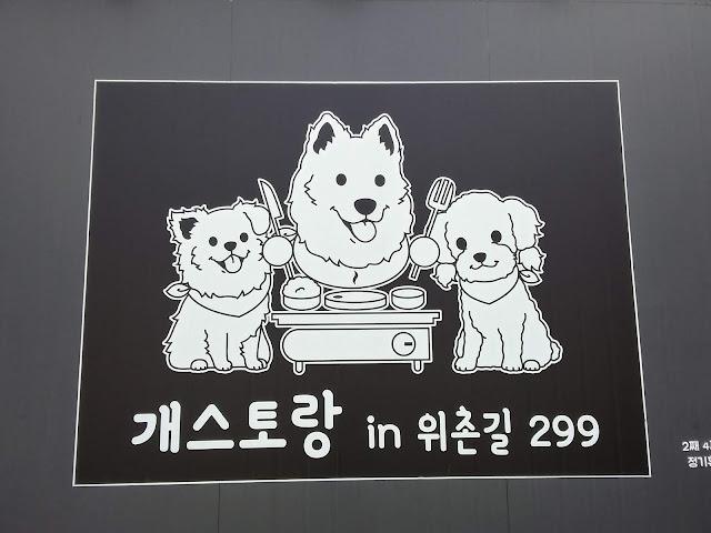 강릉 애견동반식당, 개스토랑in위촌길299