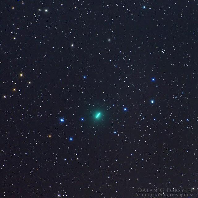 cometa c-2018 y1 iwamoto - Alan Forsyth