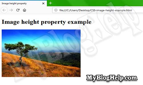 CSS image height