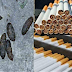 A key component of cigarette making rats shit! (Video)
