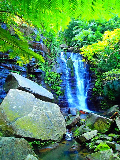西表島旅行で人気の遊びおすすめカヌー滝巡りツアー・西表島ケンガイドおすすめシャワートレック滝巡りツアーで女子旅行・家族旅行・学生旅行で離島のアクティビティ体験、カヌーでマングローブ&ケイビングで秘境パワースポット滝巡り!本物の島旅アウトドア体験を。