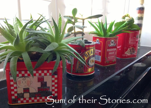 Kitchen Tin Planters