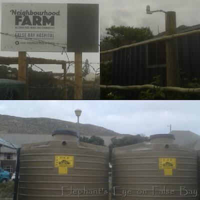 Neighbourhood Farms False Bay Hospital