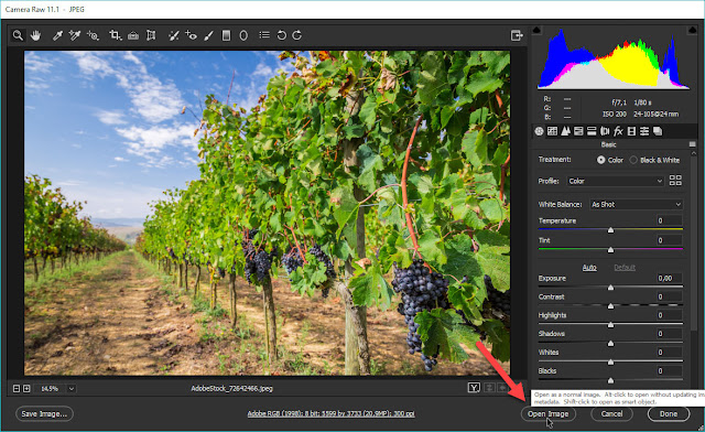 Open image in Photoshop from Adobe Camera Raw
