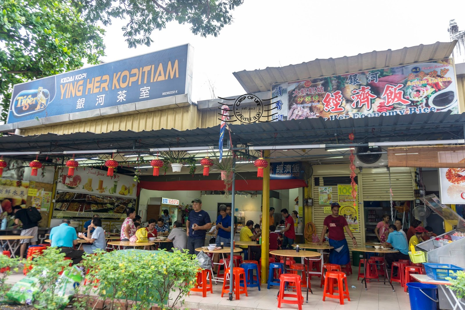 Char Koay Teow & Economy Rice @ Ying Her Kopitiam, Jalan Macalister Georgetown, Penang