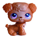 Littlest Pet Shop Large Playset Poodle (#38) Pet