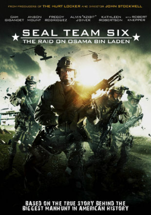 Seal Team Six: The Raid on Osama Bin Laden (2012) Dual Audio BRRip 720p