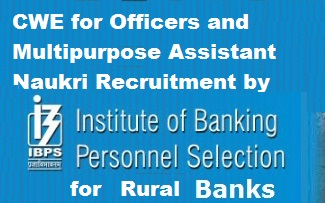 Naukri vacancy Recruitment CWE by IBPS for Rural Banks