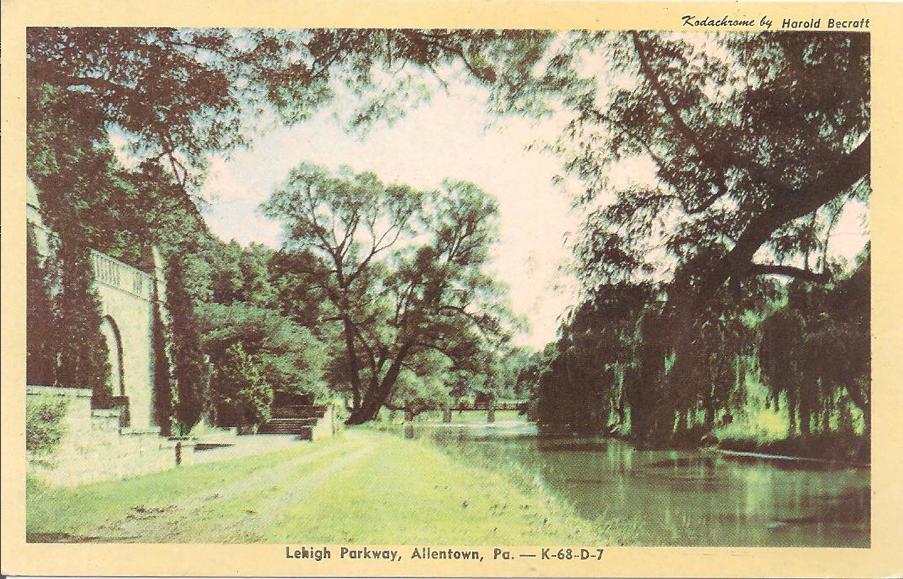 Allentown Dog Park