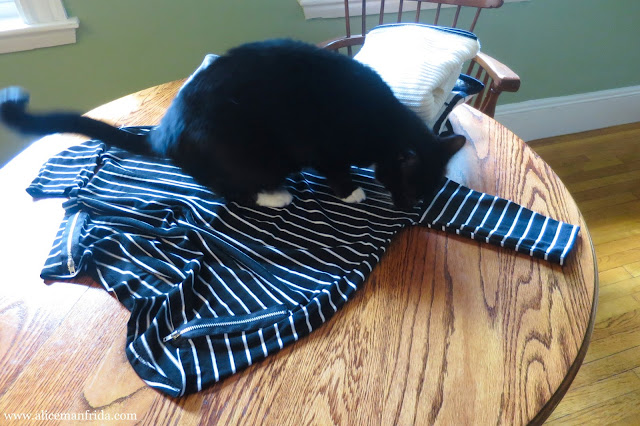Primark, stripes, black, white, cat, tuxedo cat, clothes, clothing, fashion, style, monochrome, blogger, behind the scenes, Alice Manfrida