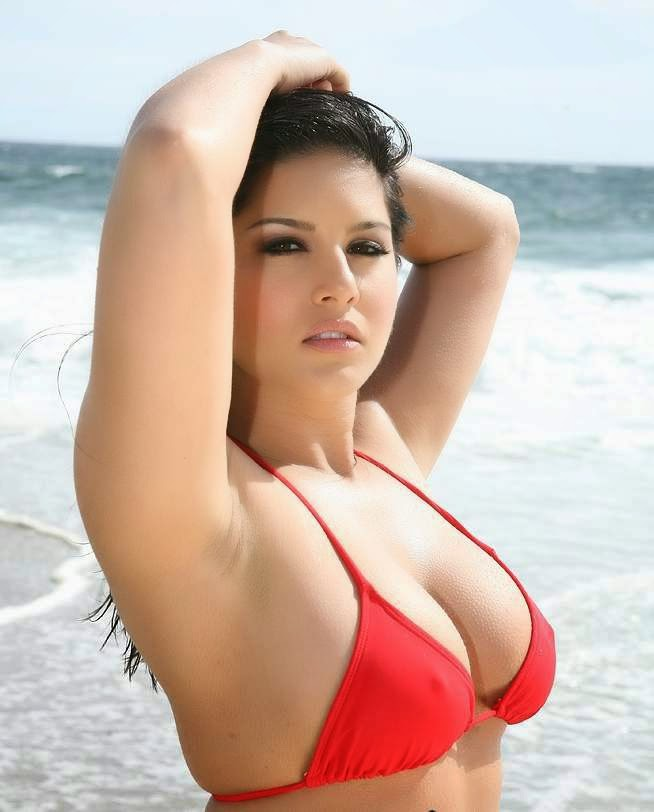 Wallpaper Hollywood Superhot Sunny Leone Hd Wallpapers -1526