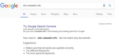 Contoh Domain Tidak Terindex