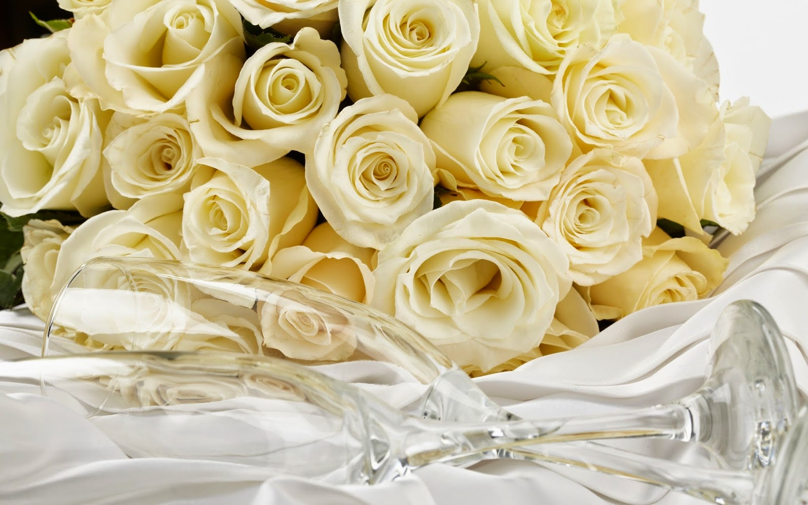 Mohan Name 3d Wallpapers Hd Wallpapers Hdwallpapers Org In Beautiful Pink Roses
