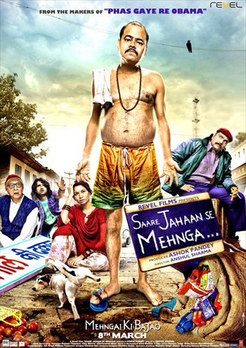 Saare Jahaan Se Mehnga 2013 Hindi Movie Download
