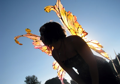 large fairy wings backlit