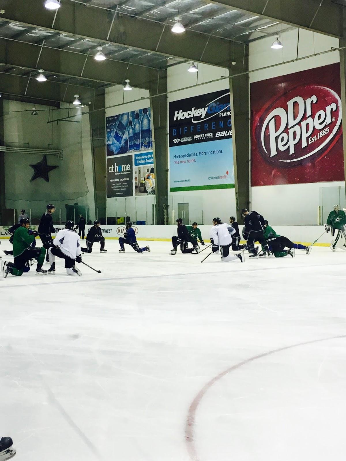 Simona's Corner of Dreams: NHL Hockey Experience – @ Madison