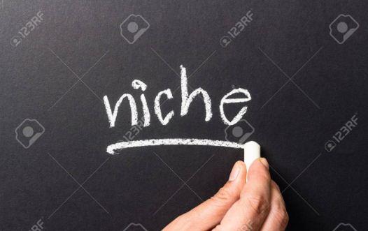 Pengertian Niche Blog, Jenis-Jenis & Cara Memilihnya - Contoh Blog